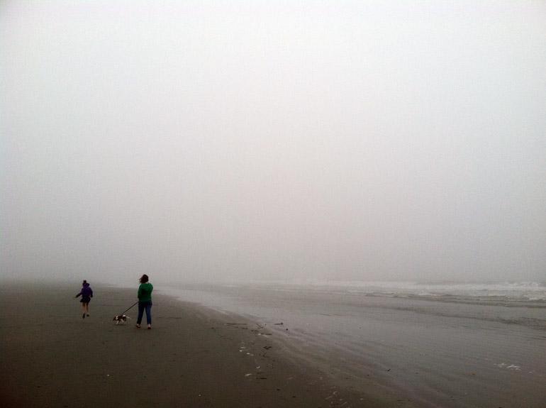 web_fog_jump_wide_4343