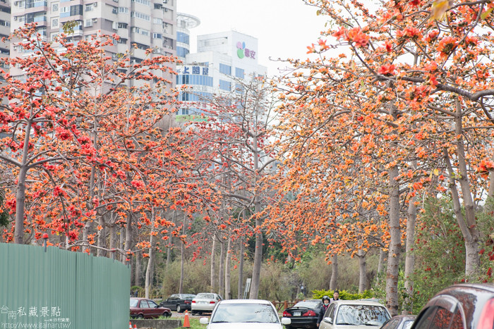 台南私藏景點--春耕巴克禮公園 (5)