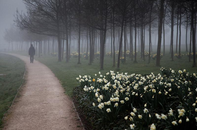 3582 London Fog