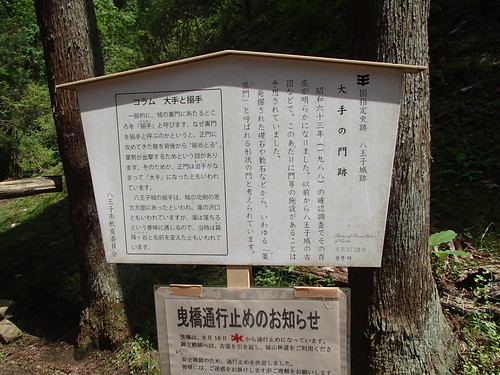 5月4日的登山 - naniyuutorimannen - 您说什么!