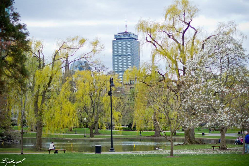 boston garden.jpg