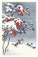Heavenly bamboo, marlberry and Eurasian tree sparrow