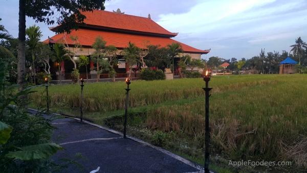 bebek-bengil-bali-restaurant-ubud-scenes-4