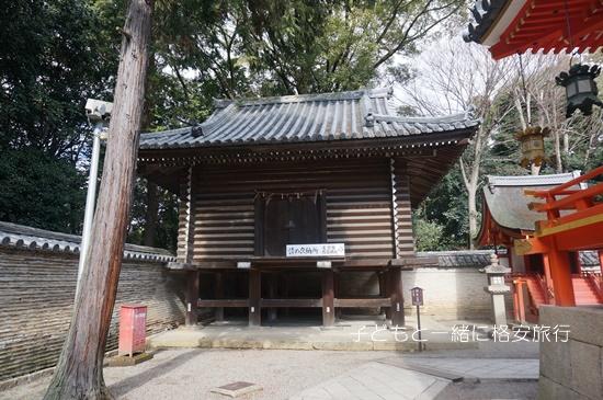 iwashimizu010