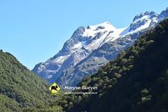 Routeburn track Nouvelle-Zélande