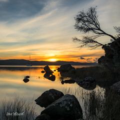 Another Tamar Sunset