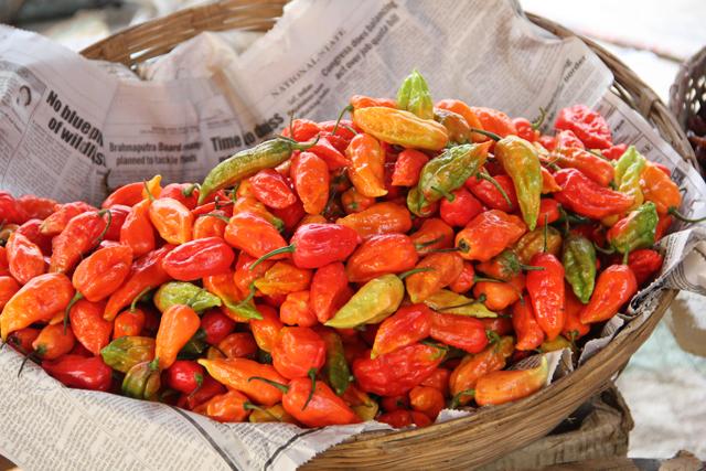 Naga king chillies