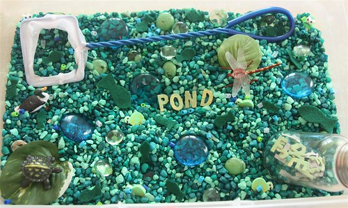 Pond Sensory Tub (Photo from Counting Coconuts)