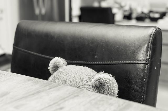 20130613-Bobby-Bear-Pretending-1757
