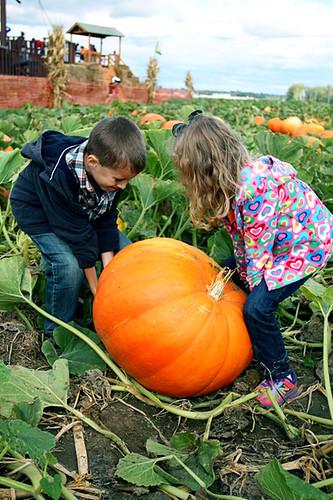 Kids-lifting-pumpkin