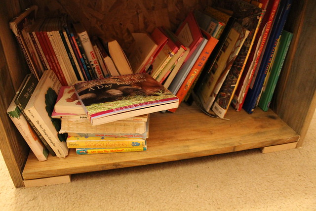 Girls New Book Shelf