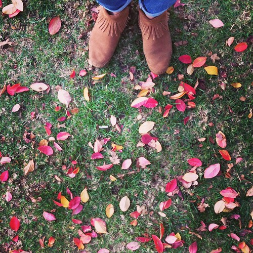 my feet . . . and fall color