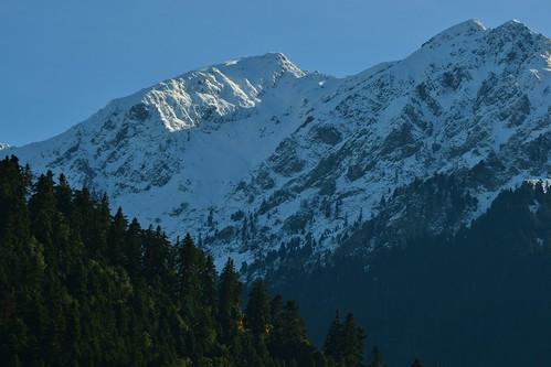 2100 2100m ευρυτανία καλιακούδα χλωρίδαευρυτανίασ ευρυτανικάτοπία νομόσευρυτανίασ 20131128 βουνάτησπατρίδασμασ κορυφήκαλιακούδασ βουνάευρυτανίασ