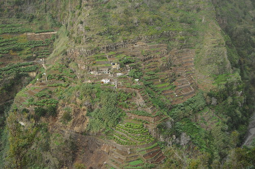 Terraces on the side of the Socorridos valley