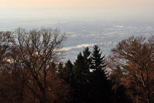 Heidelberg Heiligenberg Odenwald Kelten Keltenweg Ringwall Keltensiedlung Kloster St. Michael Archäologie Ruine Ruinen