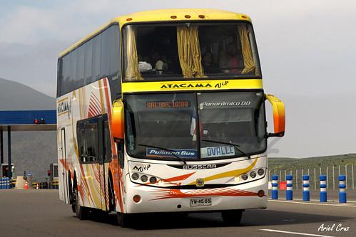 Atacama Vip (Pullman Bus) en Ruta | Busscar Panorâmico DD / YW4565