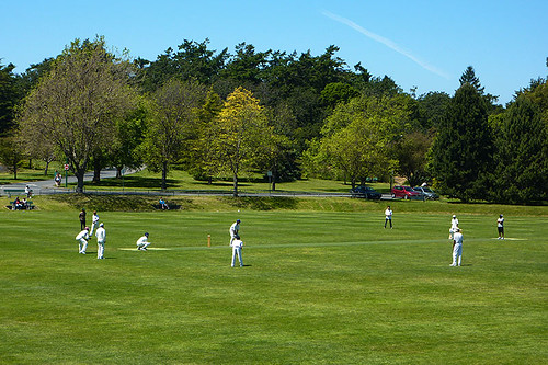 Cricket Game in Beacon Hill Park, Victoria, Vancouver Island, British Columbia, Canada