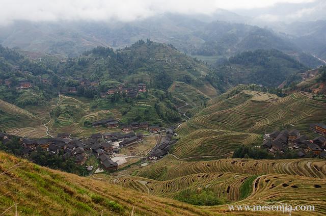 Longji (Dragon's Backbone) Terraced Rice Fields in Dazhai