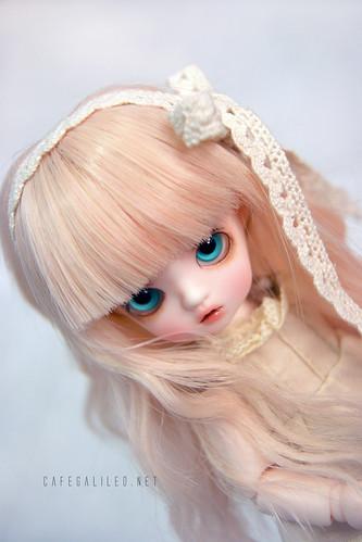 Himwari Yayoi