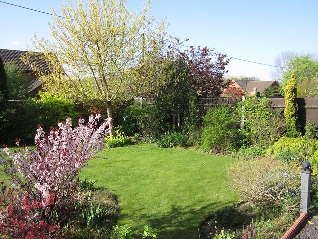 April garden 13.04.14 001