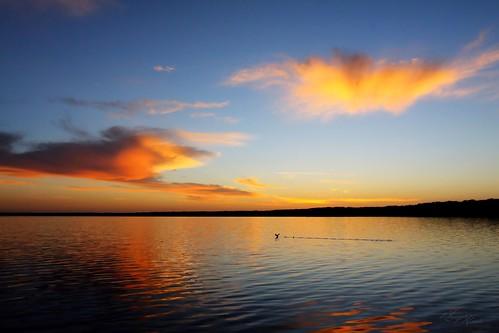 sunrise florida gainesville newnanslake powerspark work4u