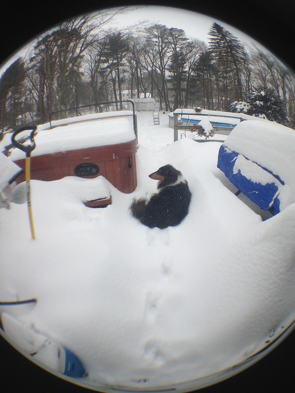 Fisheye view of snowstorm