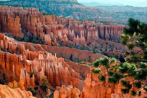 sunrise utah sandstone colorful brycecanyon rockformations