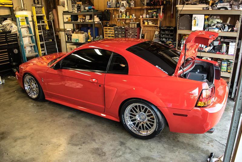 XXR 531s w/ 335s | SVTPerformance.com Xxr 531 Platinum Mustang