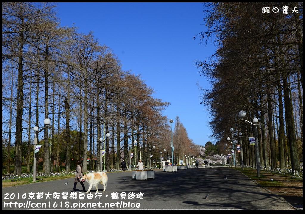 2014京都大阪賞櫻自由行.鶴見綠地DSC_1171