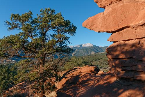 mountain tree sandstone colorado rocks unitedstates gardenofthegods coloradosprings 14er pikespeak manitousprings siamesetwins
