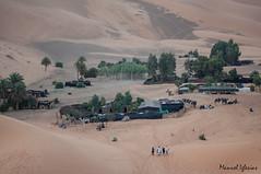 Jaimas sobre el oasis, Marruecos