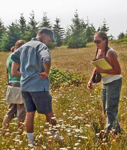 Siuslaw National Forest Biologist Michele Dragoo shows volunteers how to identify different types of wildflowers found on Mount Hebo. (U.S. Forest Service photo)