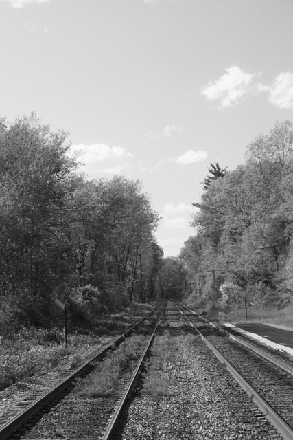 Railroad tracks, Weston, MA,  May 2013