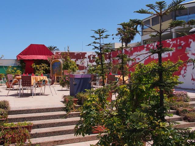 餐廳屋頂的花園