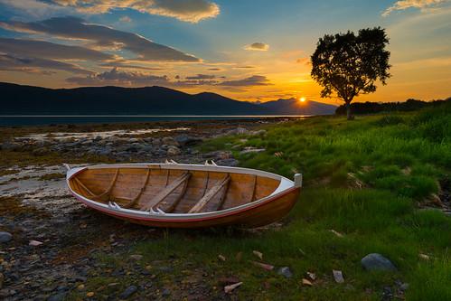 tree norway night sunrise boat norge woodenboat tre båt nordnorge summernight nordland 2013 northernnorway nesna junifest