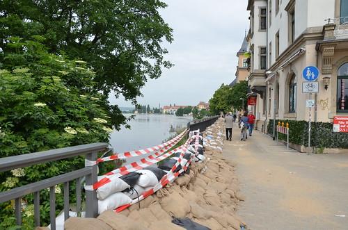 9022261959 68a71d1fdb Elbehochwasser   Juni 2013