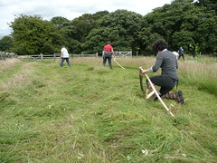 Learn to scythe in Yorkshire