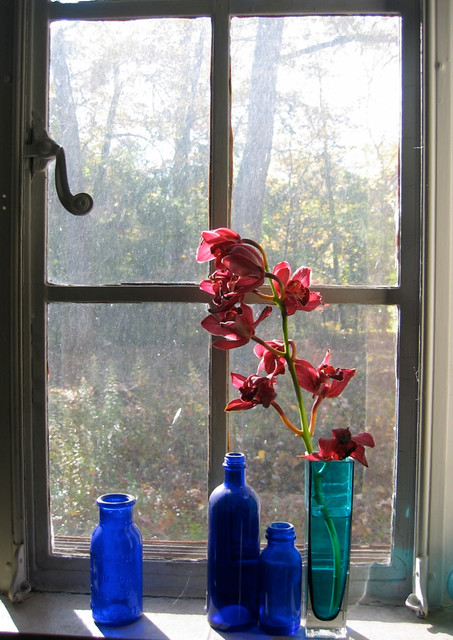 Window with orchids