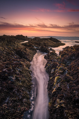 the ebb and flow of it all | pescadero, california