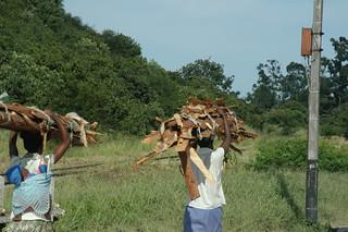 Manicaland, femmes portant le bois