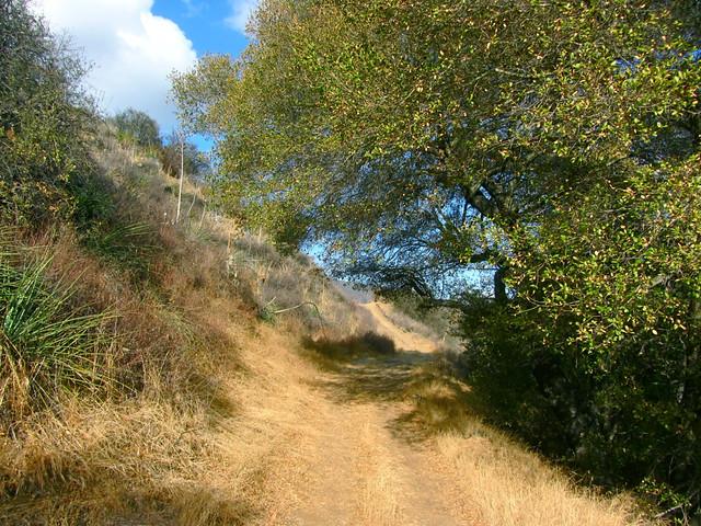 canyon trail, santa monica mountains