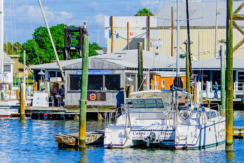 """Carpe Diem"" Catamaran docked at Maximo Marina - Stop by Maximo Seafood Shack"