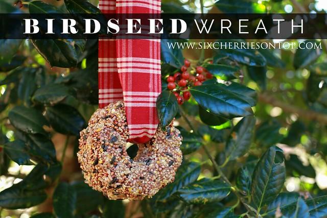 birdseed wreath