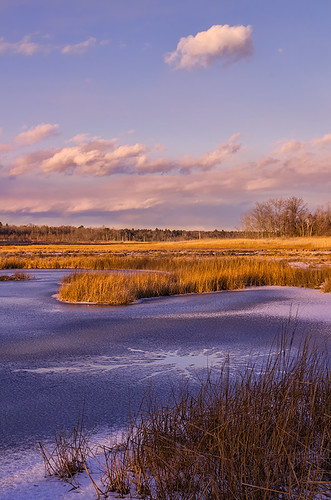 Massacre Pond, Scarborough Marsh, Maine