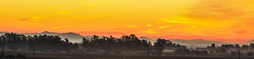 road sky orange mountains yellow sunrise landscapes vineyard highway skies stage pano winery petaluma 116 gulch
