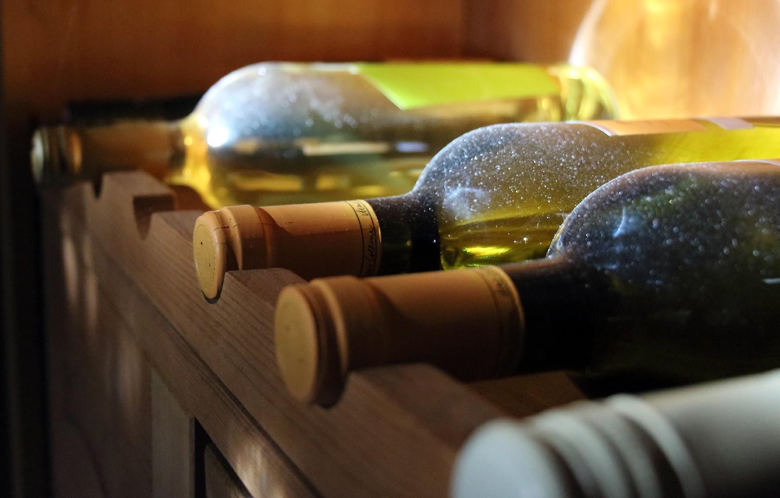 Wein - wine - vino