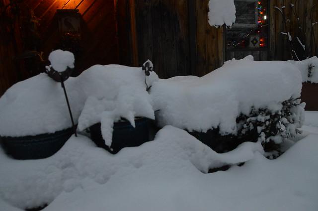 2013-12-15-Winter-272
