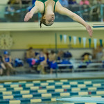 2014-02-08 -- Swimming & Diving vs. Millikin