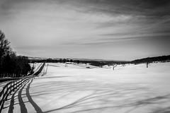Snickersville Snow