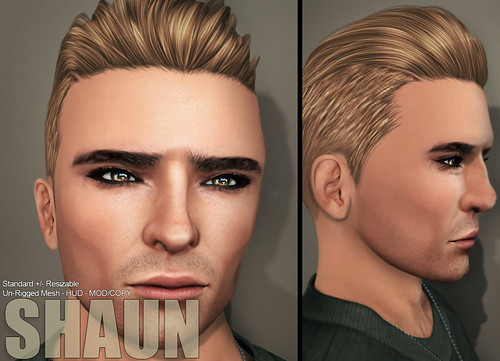 [NEW] Mens Hair Shaun